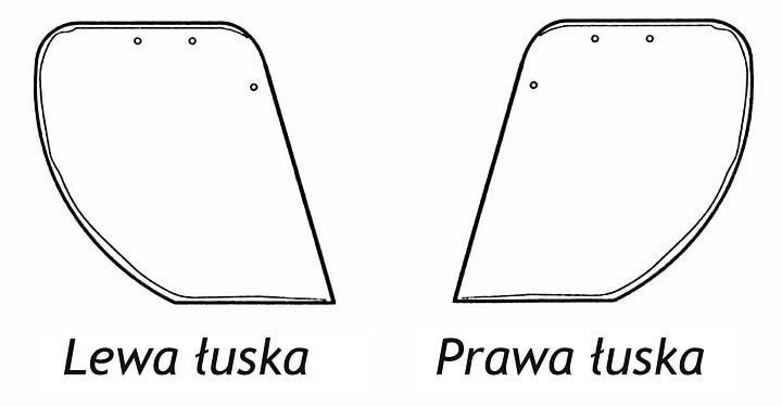 Geometria łusek odpowiada dokładnie kształtowi pokrycia staroniemieckiego.