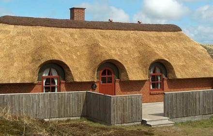 Z czego i jak go zrobić - ekologiczny dach