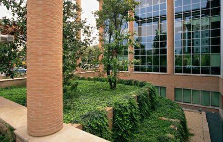 Architektoniczne fantazje, kolorowe ogrody na płaskim dachu