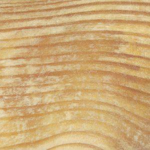 Fot. 8. Przeżywiczenie – wada typowa zarówno dla tarcicy, jak i drewna okrągłego.