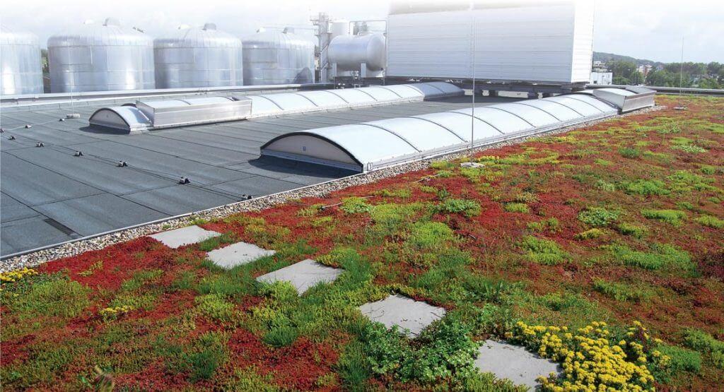 Zielony dach dzięki rozwiązaniom systemowym Bauder