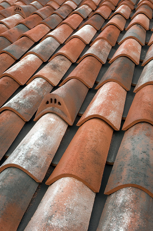 Dachówka mnich-mniszka Tegolaia tettovecchio