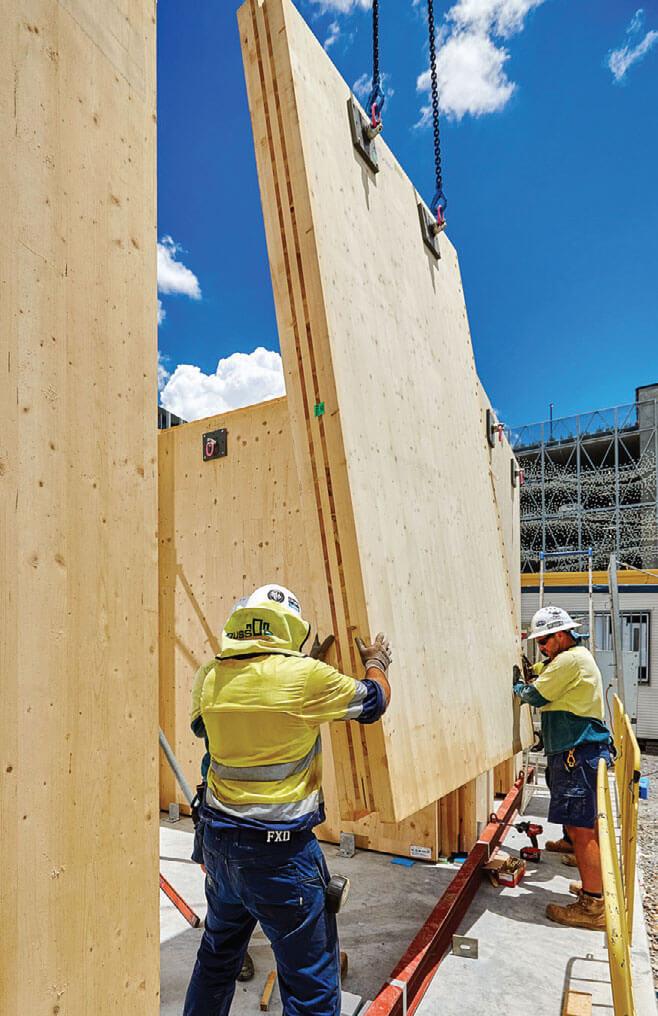 Dostawa drewna klejonego krzyżowo - CLT. Do budowy tego biurowca wykorzystano 21.175 m2 CLT i 1415m3 drewna klejonego.