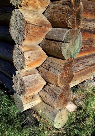 Anizotropia drewna czyli lepiej jak stoi niż leży